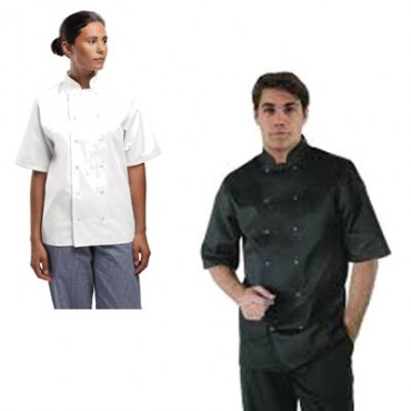 Short Sleeve Chef Jakets